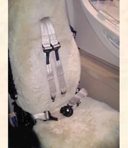 15 aircraft sheepskin