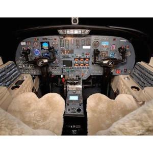 16 aircraft sheepskin